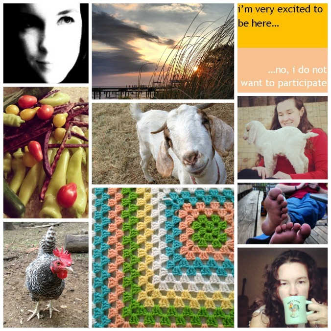 blog collage about